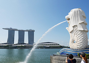 シンガポール半日市内観光(選べる昼食付き)