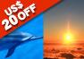 【ハワイ島発】マサシのドルフィンスイムツアー+マウナケア山頂 夕陽と星空観測ツアー
